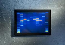 DNA Portraits