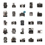 Vintage Film and Polaroid Cameras