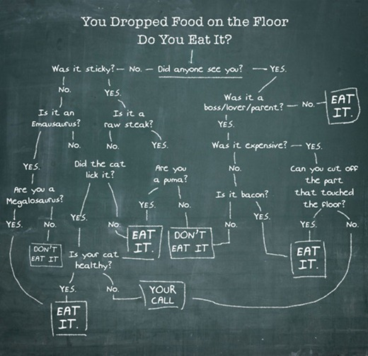 Dropped-food-eating-guide