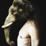 Francesco Sambo's Man-Animal Hybrids