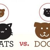 catsvsdogs_infographic_thumb.jpg
