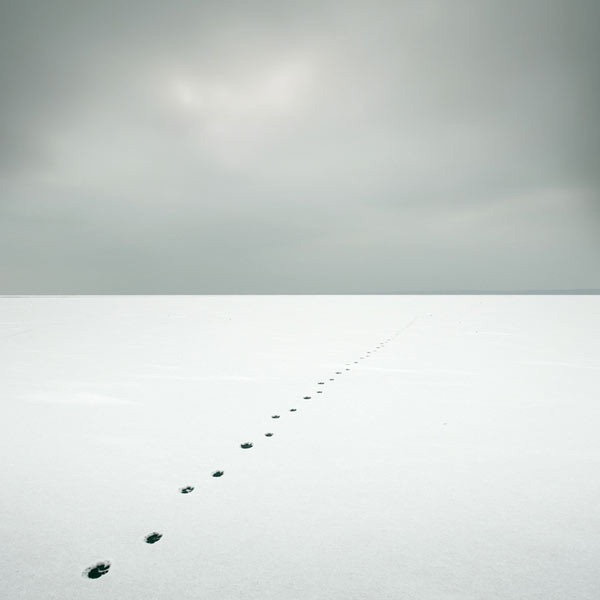 Minus_Photo_Series_ Lake Balaton_Hungary_Akos_Major_5