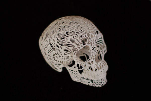 Joshua-Harker-Crania-Anatomica-Filigre-03