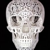 Joshua-Harker-Crania-Anatomica-Filigre-Detail.jpg