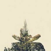 Double Exposure Photo Project Combines Human Bodies in Yoga Postures With Plant Life Structures