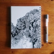 Pen and Ink Illustration by laurelmyck