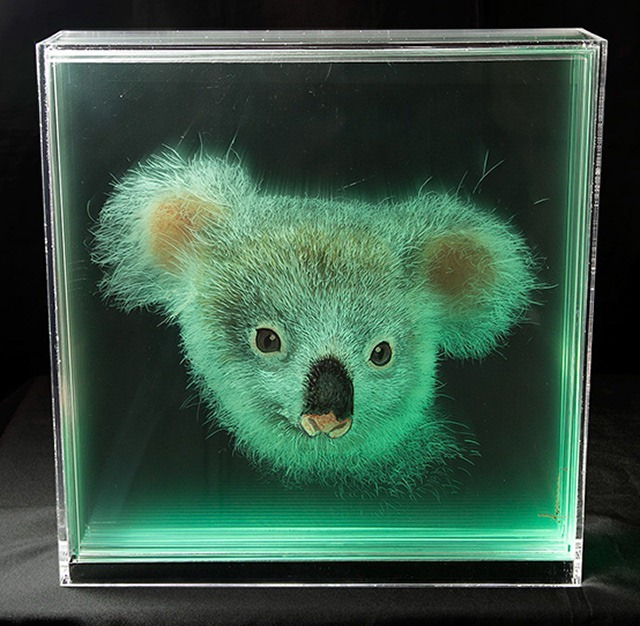 Koala-Holographic-Paintings-of-Animal-Heads-by-Yosman-Botero