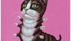 Tuxedo-Cat-by-Casey-Weldon.jpg