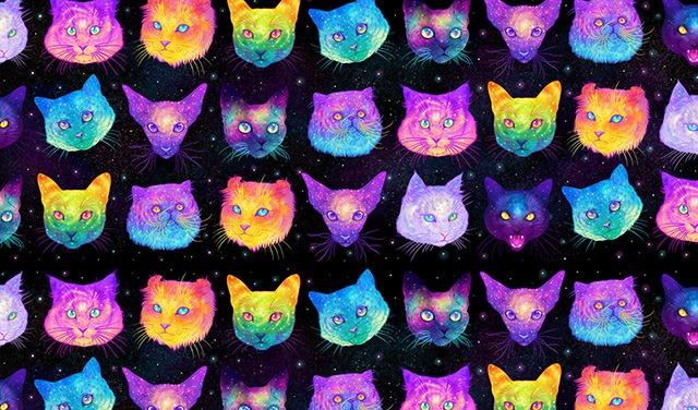 Galactic-Cats-Illustrations-by-Jen-Bartel