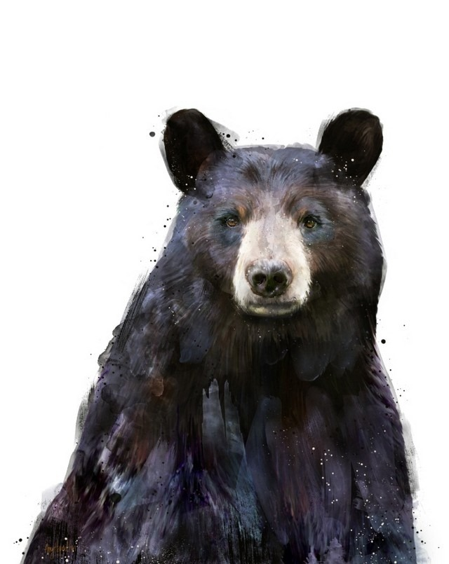 Wildlife_Watercolors_Amy_Black_Bear_Hamilton