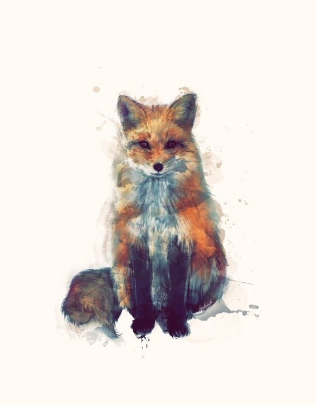 Wildlife_Watercolors_Fox_Amy_Hamilton_5