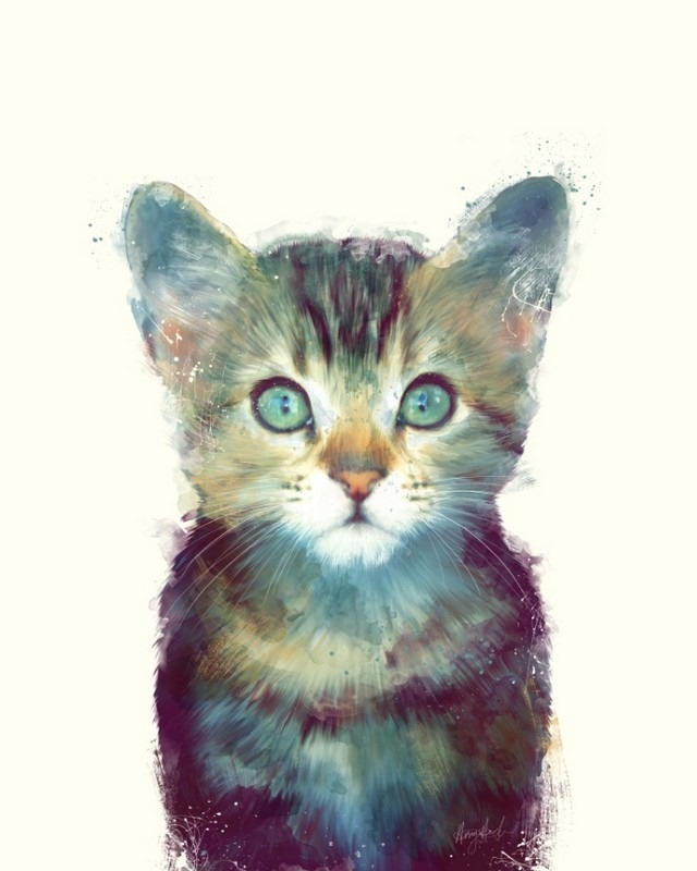 Wildlife_Watercolors_Kitten_Amy_Hamilton_7