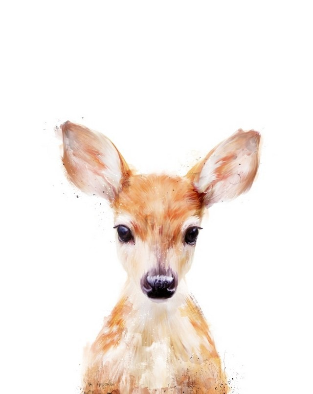 Wildlife_Watercolors_Little_Deer_Amy_Hamilton_11
