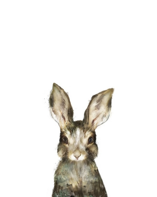 Wildlife_Watercolors_Little_Rabbit_Amy_Hamilton_10