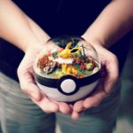 These Amazing PokeBall Terrariums Will Wow You!