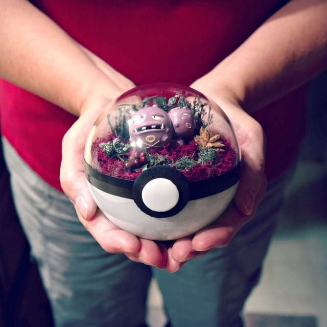poke_ball_terrarium___weezing___medium_by_the_vintage_realm-daifqpd