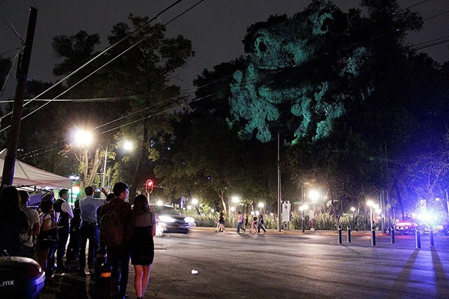 ANIMAL-WATCHING---Video-installation-on-trees-in-Mexico-Revista-Marvin-02