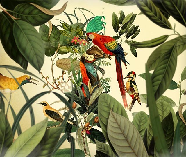 Birds-Digital-Art-Collages-by-Orbeh-Studio