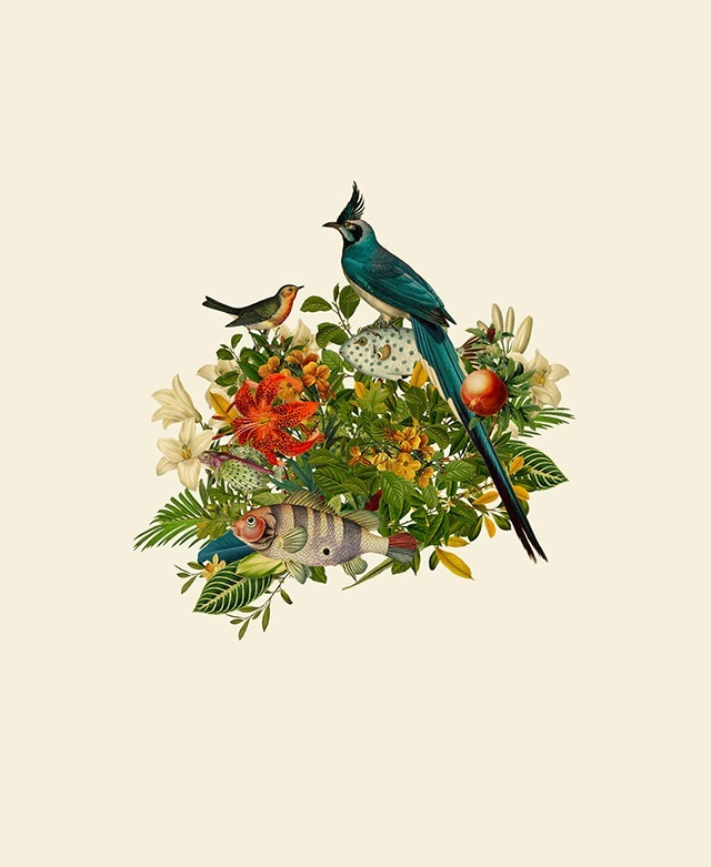 Blue-Bird-Digital-Art-Collages-by-Orbeh-Studio
