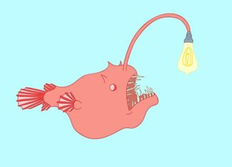 Jasmine-Echols-Graphic-Design-Illustrations-Angler-Fish