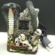 Read more about the article Skull Web Camera