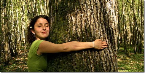 Read more about the article Forest Love – Viral Video From Greenpeace