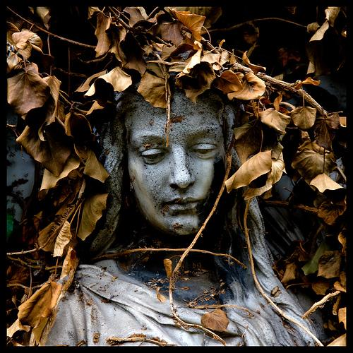 Read more about the article 40 Hauntingly Beautiful Photographs Taken In Graveyards