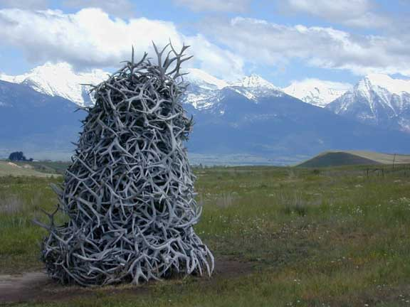 Read more about the article Antler Pile