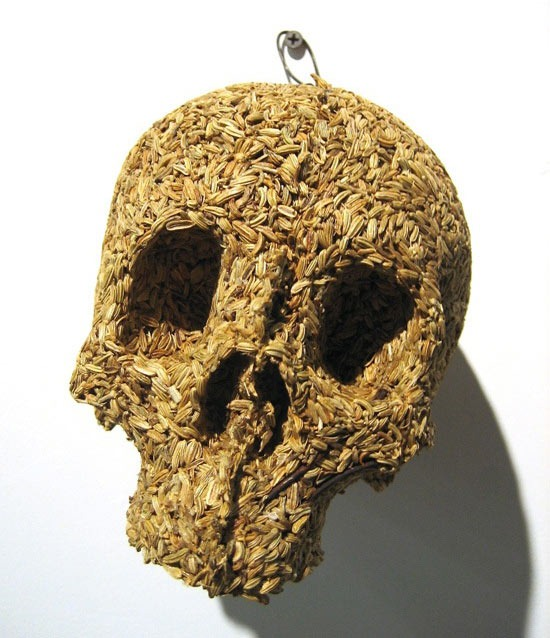 Read more about the article Spice Skulls