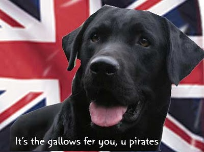 Read more about the article Dogs against Piracy
