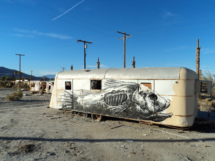 Read more about the article Street Art by Roa