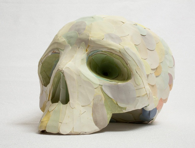 Read more about the article Feathered Skull