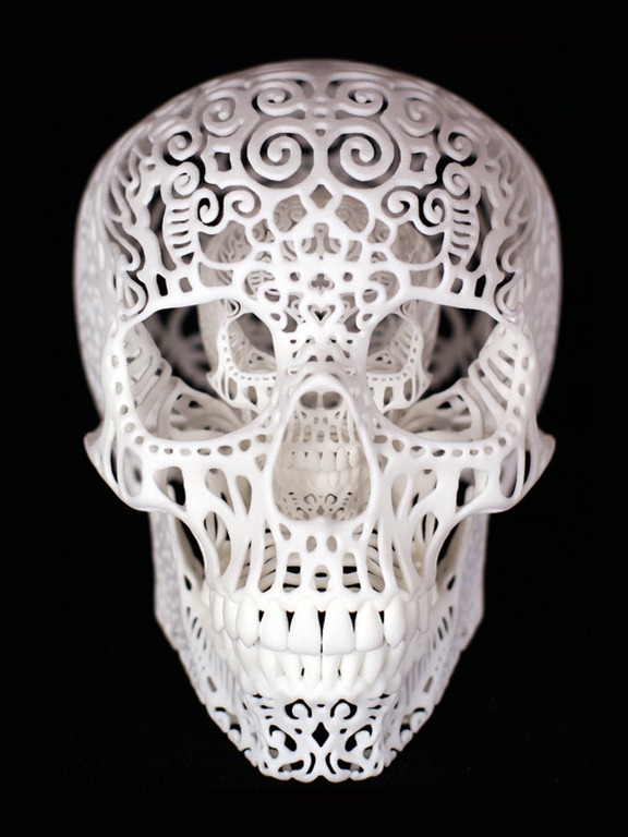 Read more about the article Joshua Harker's Stunning Filigreed Skulls