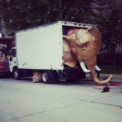 Laurence-Vallieres-Cardboard-Elephant-02