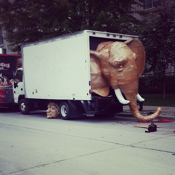 Read more about the article The Elephant in the Truck