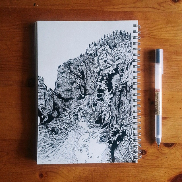 Read more about the article Pen and Ink Illustration by laurelmyck