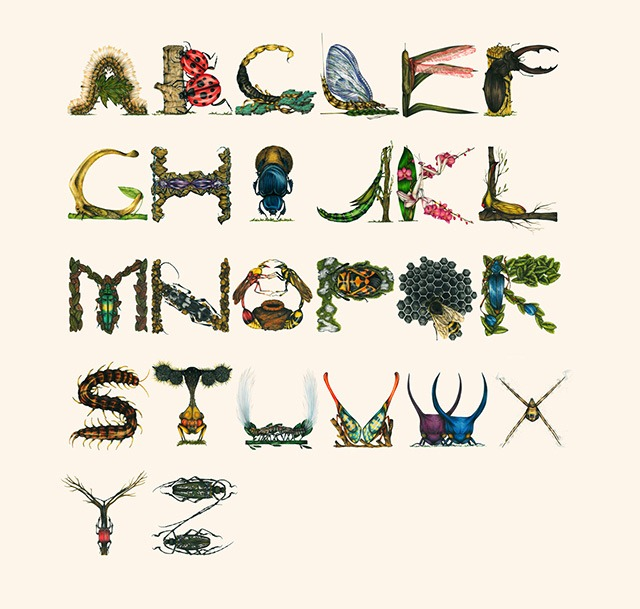 Read more about the article Stunning Insect Alphabet Illustrations by Paula Duta
