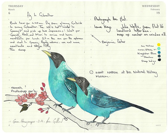 Read more about the article Remarkable Illustrations of Birds Drawn in Moleskine Diaries