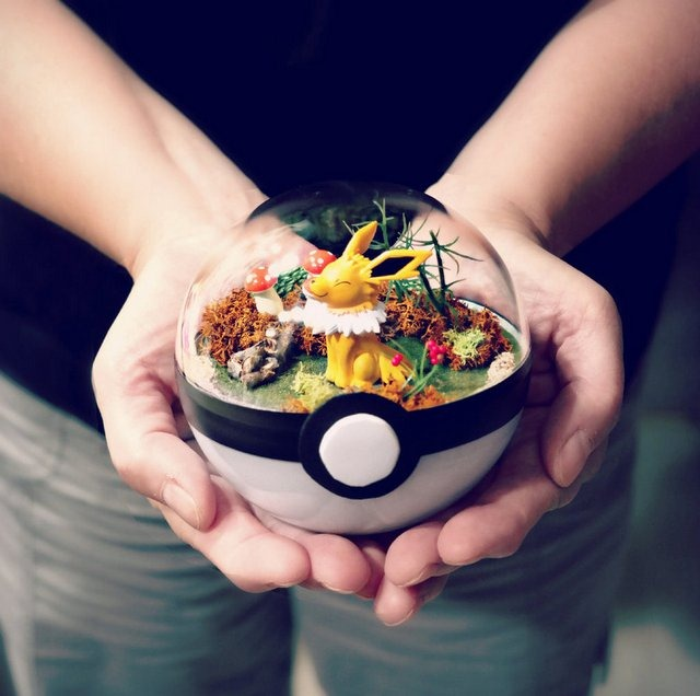 Read more about the article These Amazing PokeBall Terrariums Will Wow You!