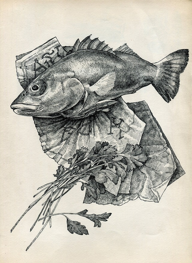 Read more about the article The Stunningly Detailed Illustrations of Ramiro Pasch