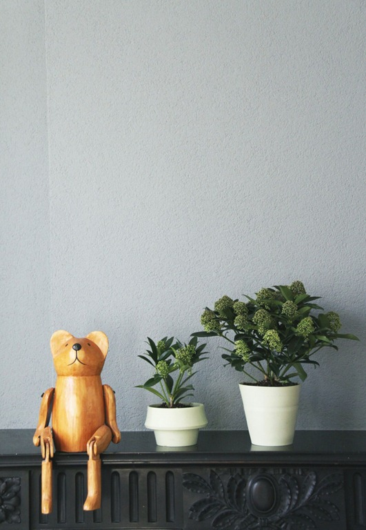 Read more about the article JOKJOR FOLD: The Planter That Grows Along With The Plant