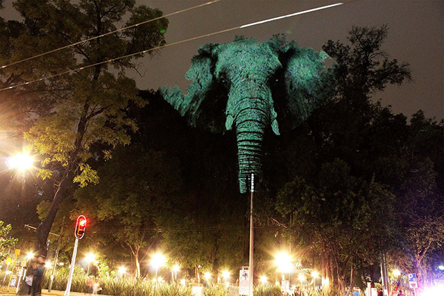 Read more about the article Sensational Art Installation of Wildlife Projected on Trees